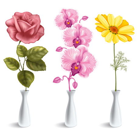 floral decoration: Set of beautiful flowers (rose, orchid, daisy) in the vase. Isolated on white background.