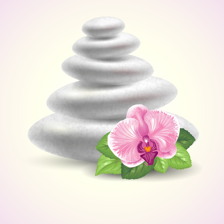 stones with flower: Spa still life with stones and orchid flower. Vector illustration. Illustration