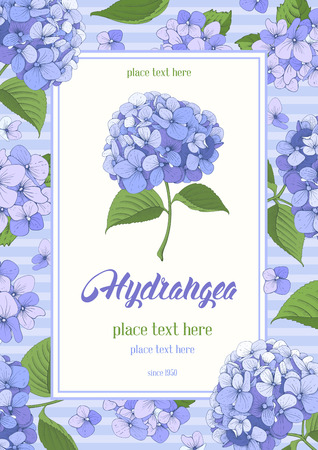 Vintage card with hand drawn floral elements in engraving style - gentle hydrangea. Vector illustration.