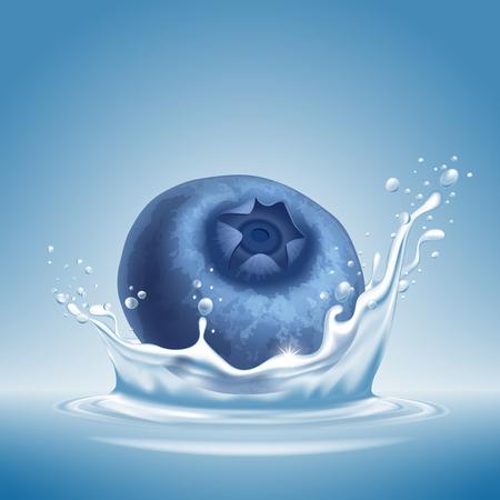 Blueberry icon.