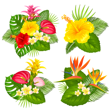Summer bouquets set with tropical exotic leaves and flowers. Different arrangement. Vector illustration. Isolated on white background.