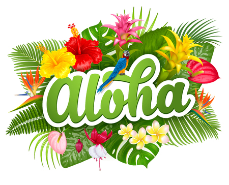 Aloha Hawaii hand drawn lettering and tropical plants, leaves and flowers. Hawaiian language greeting. Vector illustration. Isolated on white background.