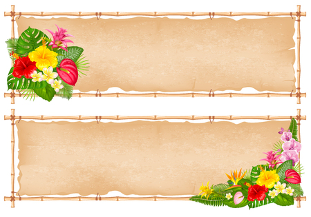 Summer tropical bamboo frame design with exotic leaves and flowers. Vector illustration. Isolated on white background. Banque d'images - 117022716