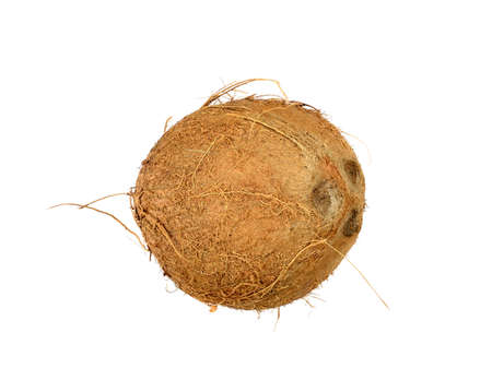 isolated coconut on white background Banco de Imagens