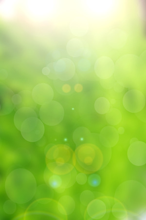 green nature bokeh background abstract