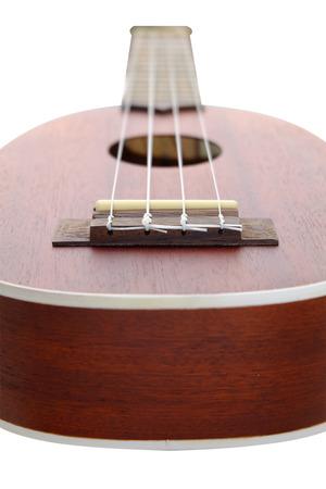 acoustical: ukulele on white background