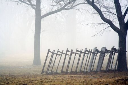 Foggy park spring tables