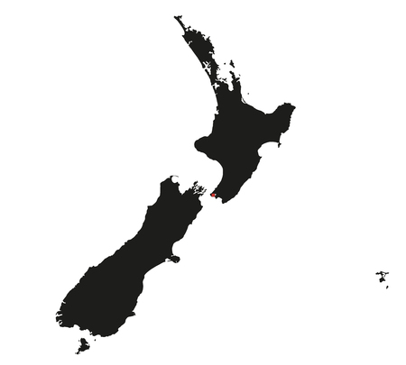 Highly Detailed New Zealand Silhouette map.