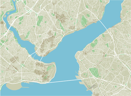 Vector city map of Istanbul with well organized separated layers.  イラスト・ベクター素材