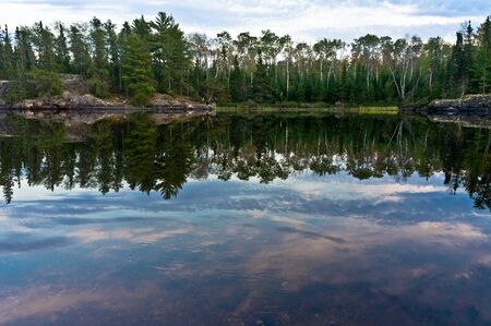 minnesota woods: Birch trees reflected in the Kawishiwi River in the Boundary Waters Canoe Area