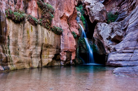 chasm: Royal Arch Creek in Elves Chasm, near the confluince with the Colorado River, Grand Canyon National Park Stock Photo