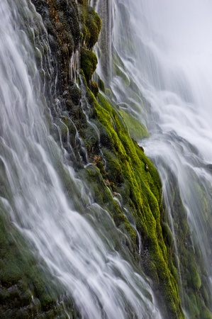 Moss covers the cliffs at Thunder River in Grand Canyon National Park. photo
