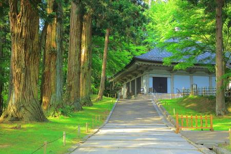 the world heritage: World Heritage hiraizumi chsonji Temple gold Editorial