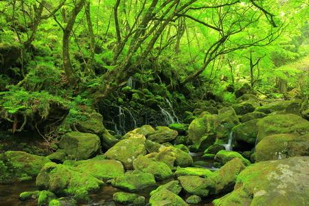 subsoil: Xia Yuan falls subsoil water