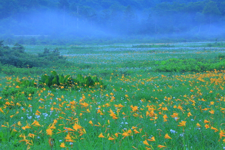 Hachiman-Taira OBA Valley