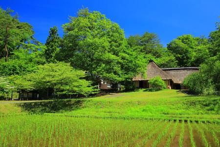 showa: Kitakami-Michinoku folk village