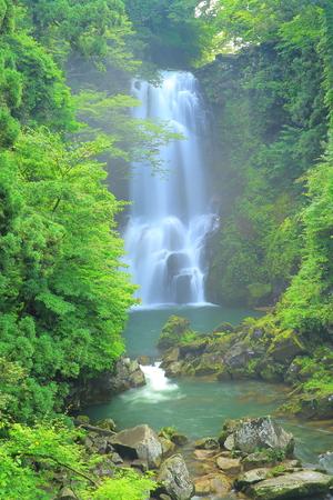 Akita Prefecture Nana-nikaho-Shi summer shirataki
