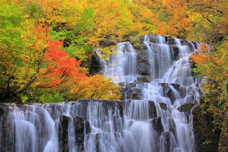 Les feuilles d'automne tombent et Gorge deux chutes d'eau Banque d'images - 63449726