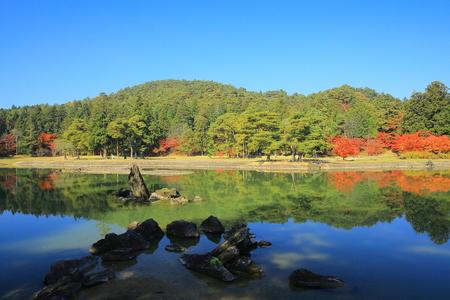 scenic spots: hiraizumi leaves motsu-JI
