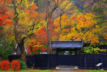 Autumn kakunodate Editorial