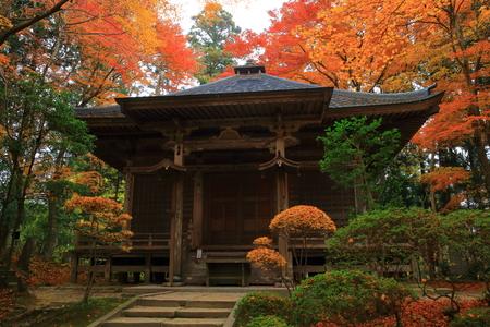 scenic spots: World Heritage hiraizumi in chuson-ji Temple autumn