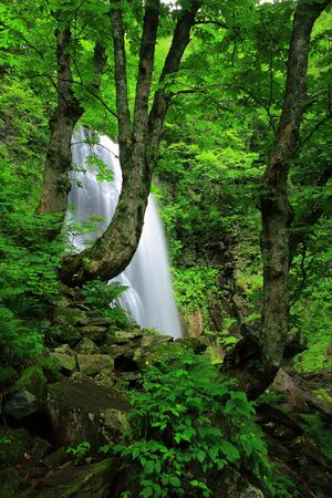 Summer onogawa fudo waterfall
