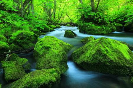 Oirase stream 3 turbulent flow
