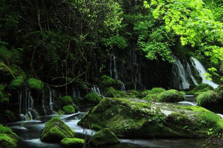 subsoil: Former subsoil water falls Stock Photo