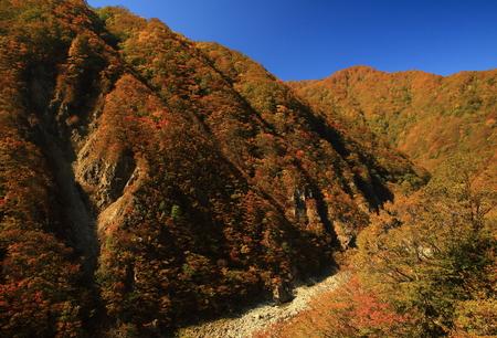 scenic spots: Autumn Lake in autumn