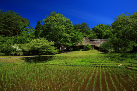 Kitakami-Michinoku folk village