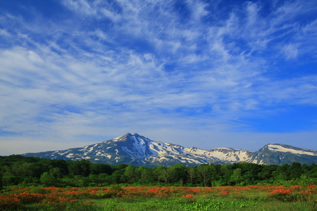 plateau: Chokai mountain mulberry wood-bog Stock Photo