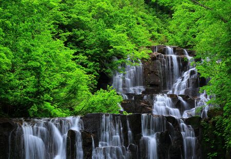 Summer fall and Gorge two waterfalls Stok Fotoğraf - 81198760