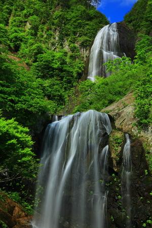 Waterfalls of standing or Valley in summer Stok Fotoğraf