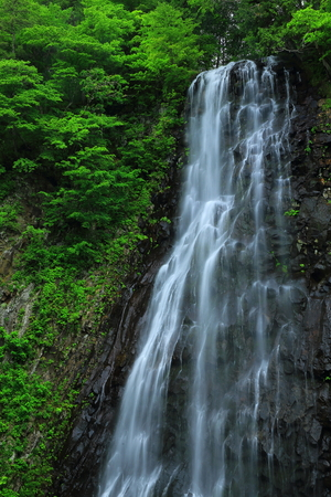 Standing or Valley of the summer waterfall Stok Fotoğraf - 81198774