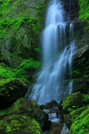 scenic spots: Falls in summer Stock Photo