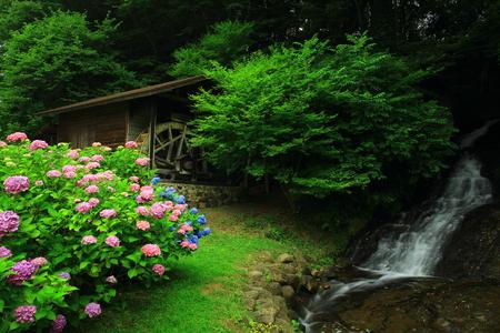 water turbine: Waterfalls and mill