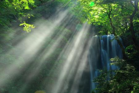 Summer kameda fudo waterfall