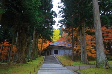 hiraizumi in chuson-ji Temple autumn Editorial