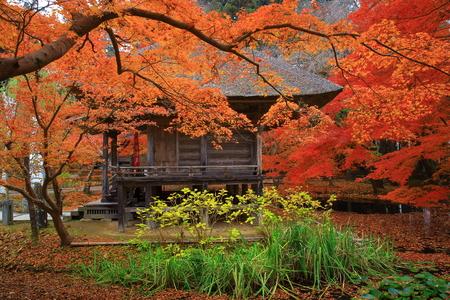 scenic spots: hiraizumi in chuson-ji Temple autumn Editorial