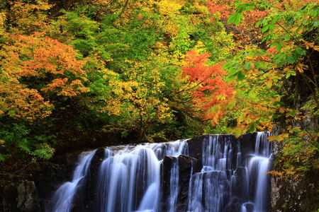Autumn leaves fall or Valley two waterfalls Stok Fotoğraf - 88646164