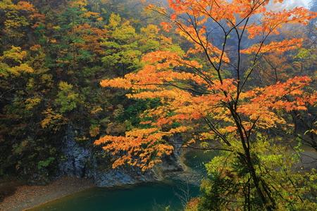 Dakigaeri Valley in autumn Stock Photo