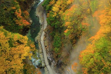 Oyasu Gorge in autumn