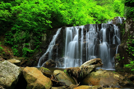 Summer fall and Gorge two waterfalls Stok Fotoğraf - 99157221