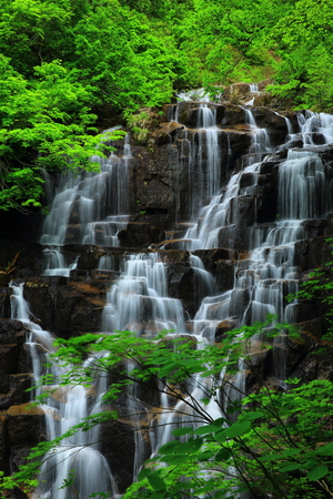 Summer fall and Gorge two waterfalls