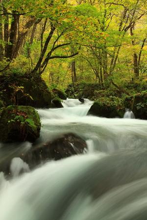 Oirase Gorge in autumn Stock Photo