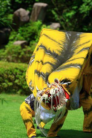 Otsuchi regional performing arts shiroyama Tiger dance