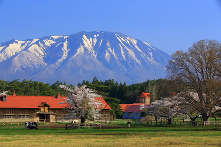Iwate y granja Foto de archivo