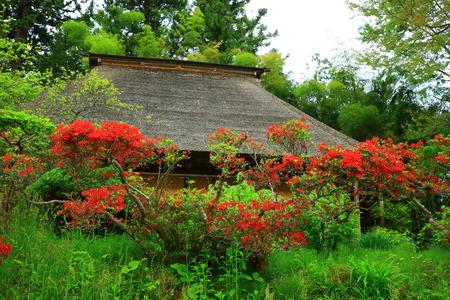 Temple in japan garden