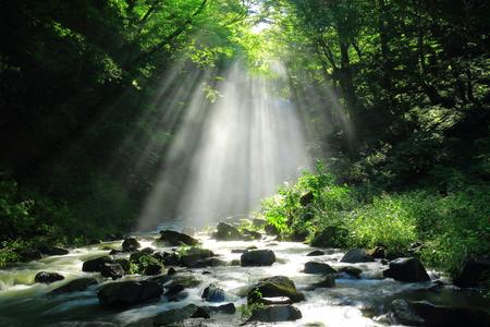 Summer kameda fudo waterfall 写真素材