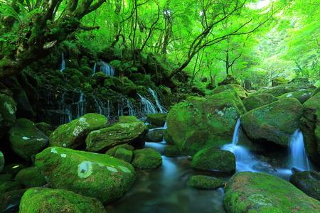 Xia Yuan falls subsoil water